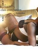 Sun kissed  HOTEL★★★★★ companion